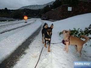 Schnee auf Kreta